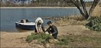 На Тернівському водосховищі встановлено 500 нерестових гнізд